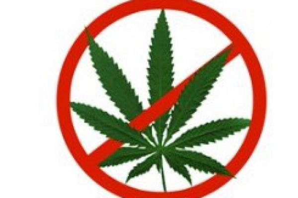 Proč říct marihuaně ne!