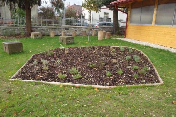 Realizace environmentální výchovy na gymnáziu …